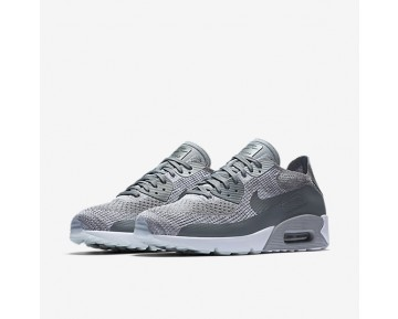 Chaussure Nike Air Max 90 Ultra 2.0 Flyknit Pour Homme Lifestyle Platine Pur/Blanc/Gris Loup/Gris Froid_NO. 875943-003